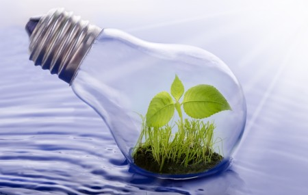 lightbulb plant water nexus iStock_000020312449Medium